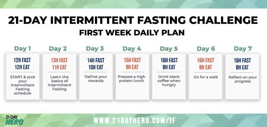 A Beginner S Guide To Intermittent Fasting Daily Plan Schedule